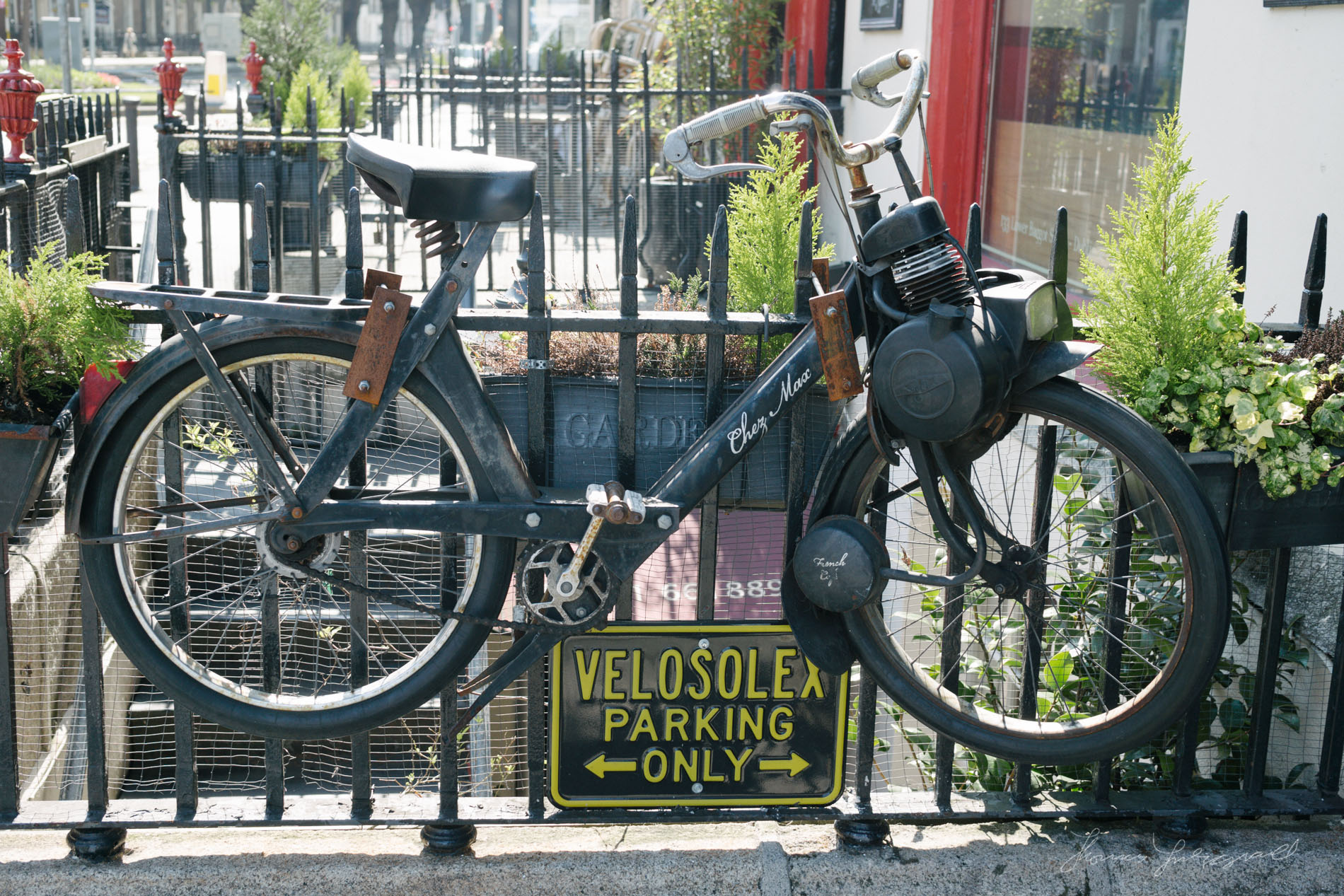 Old bicycle used for Advertising