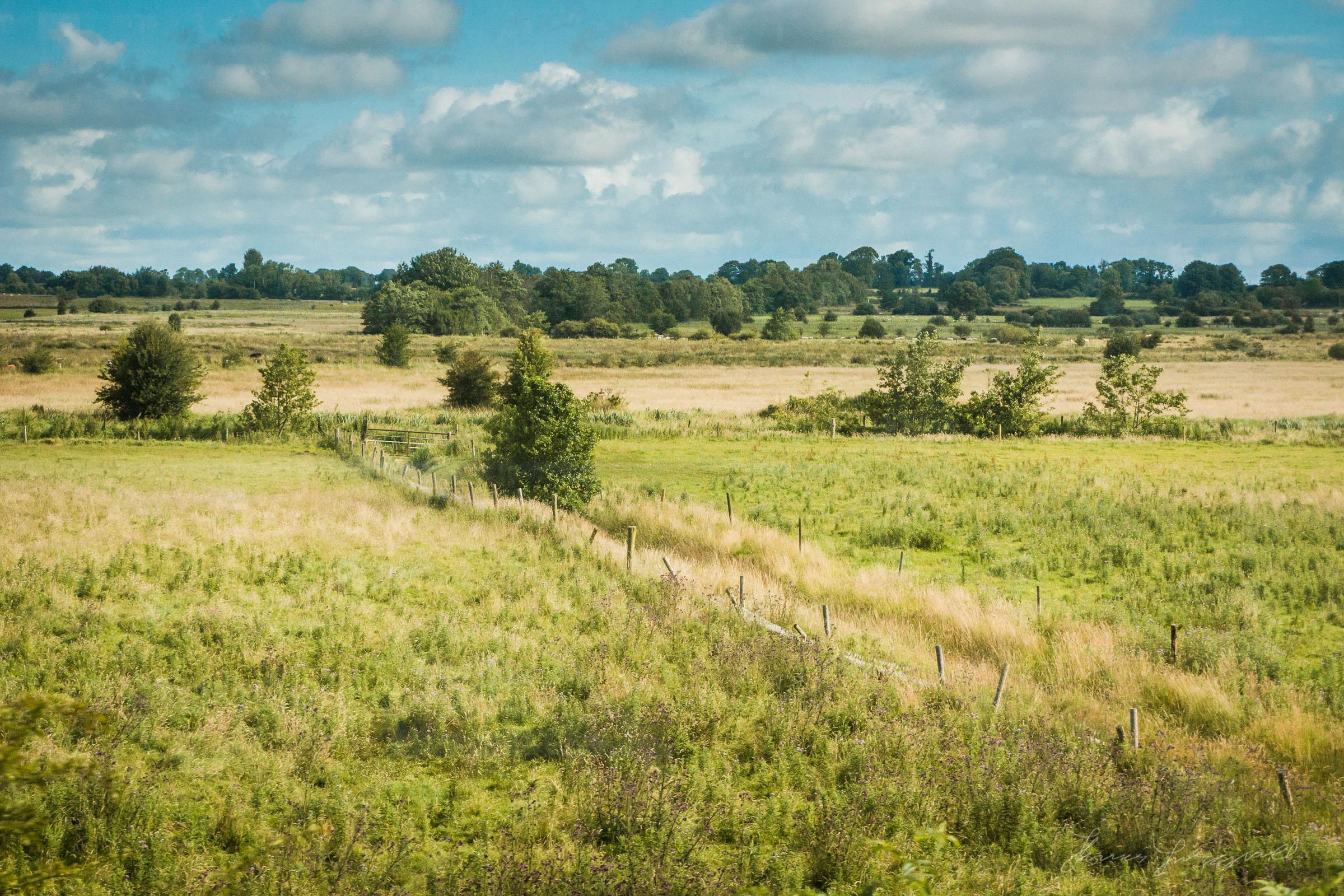 Farmland in the Midlands of Ireland
