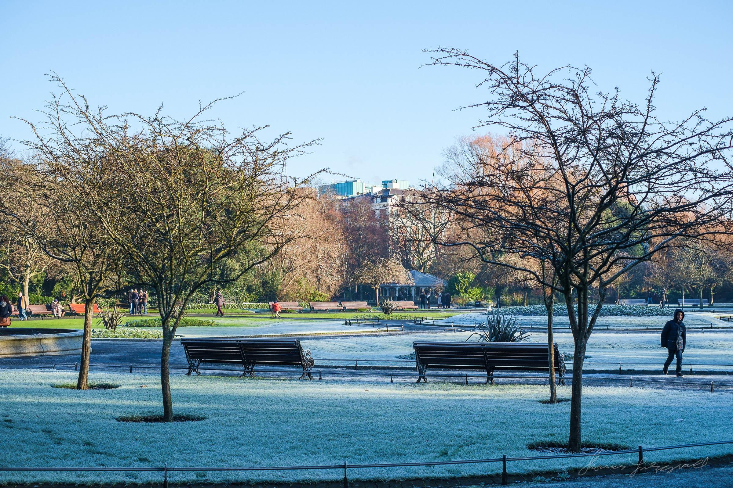 first-frost-14.jpg