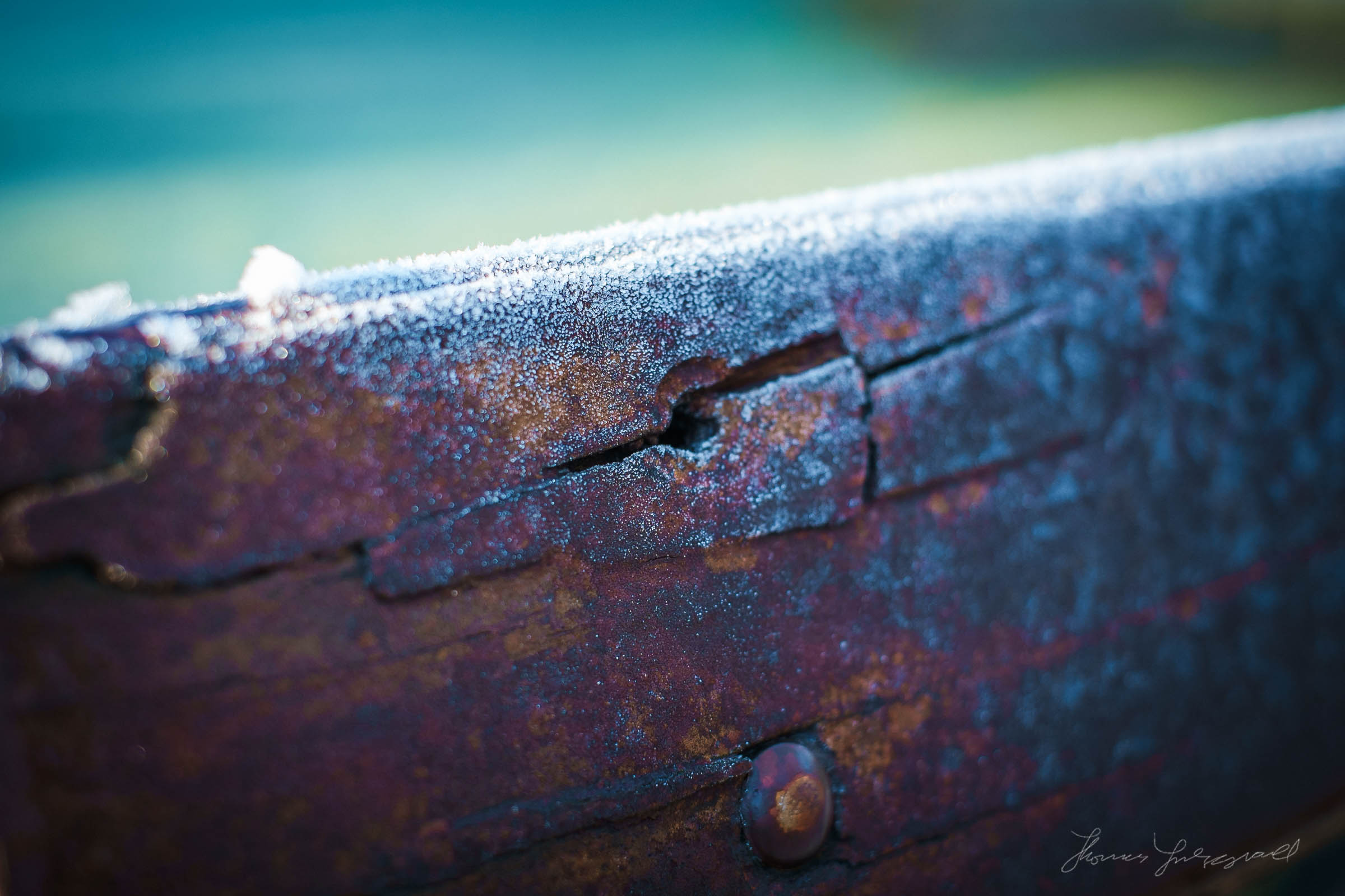 first-frost-11.jpg