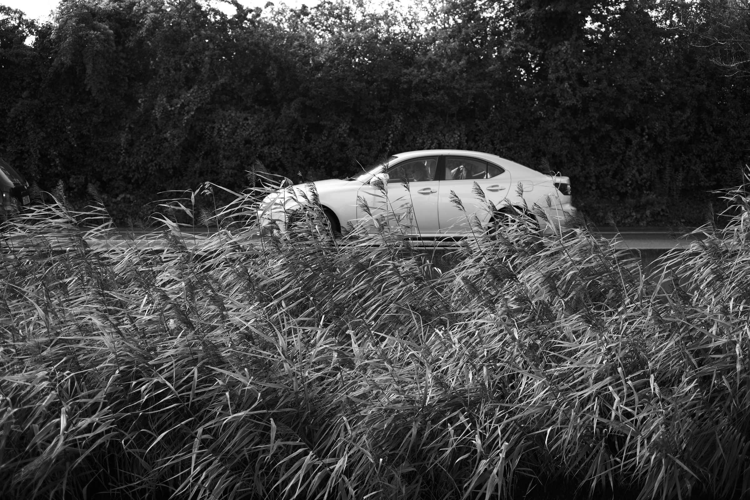 car-black-and-white.jpg