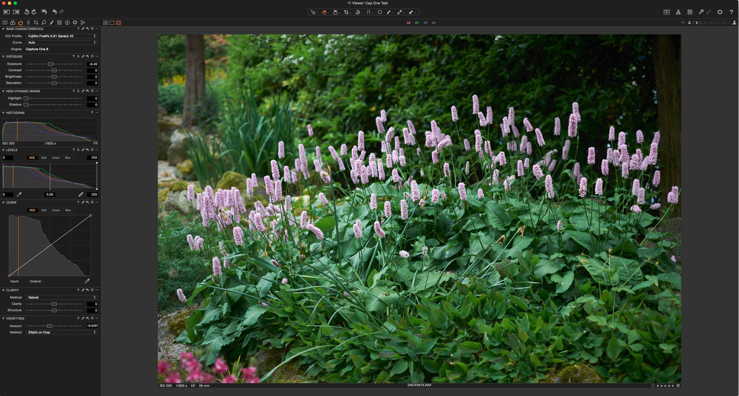 Capture One 8.3 Interface