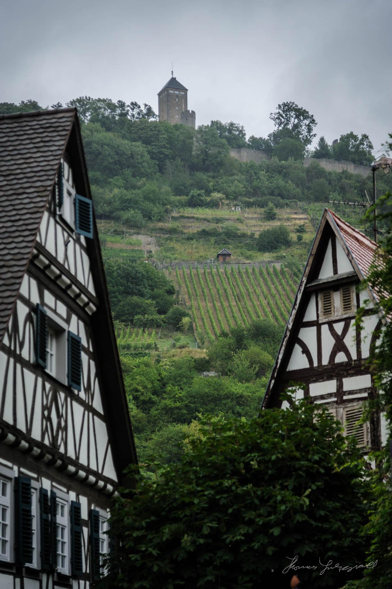 Heppenheim-Rain-00017.jpg