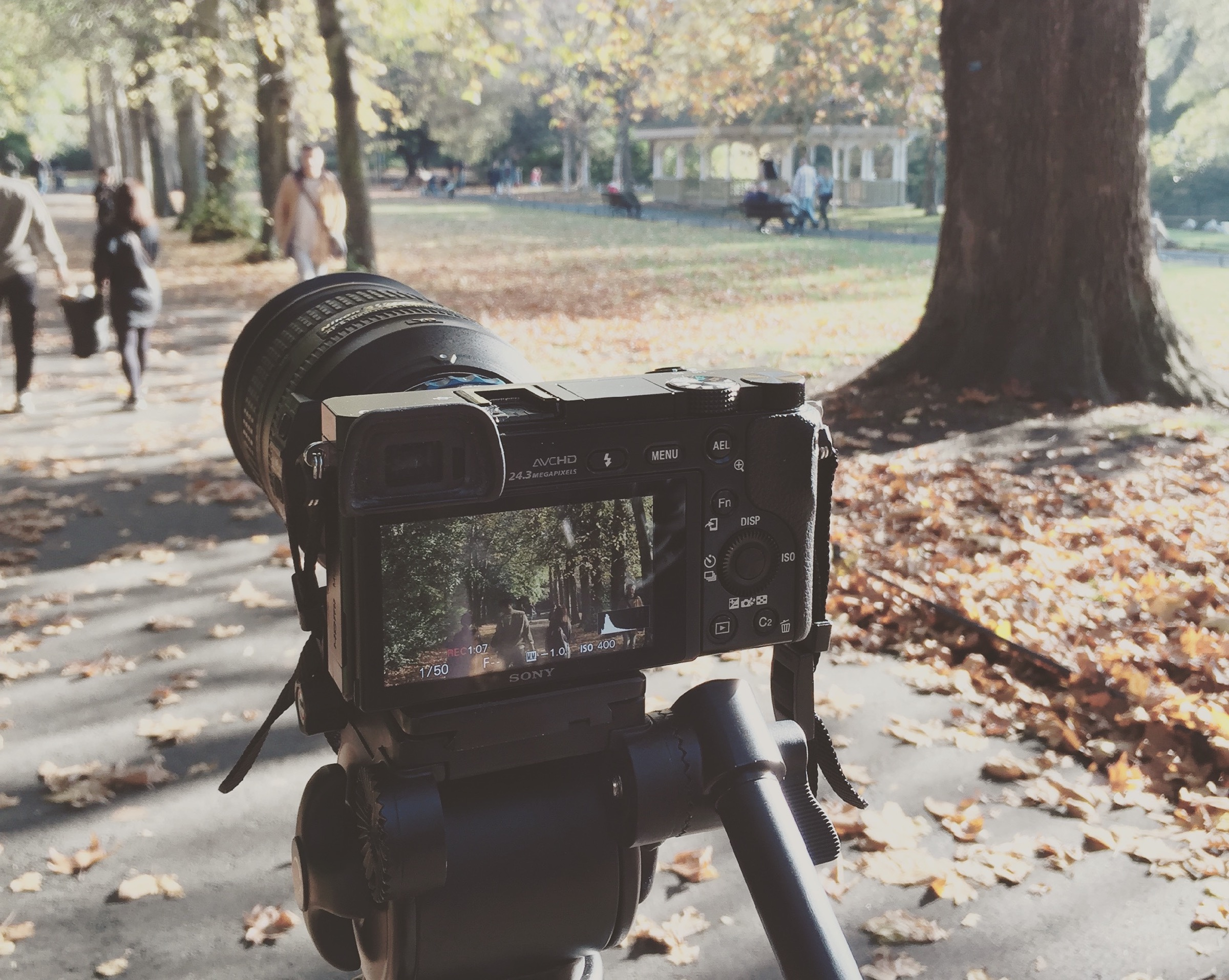 Video: Autumn in the Park - Shot on Sony A6000 — Thomas Fitzgerald