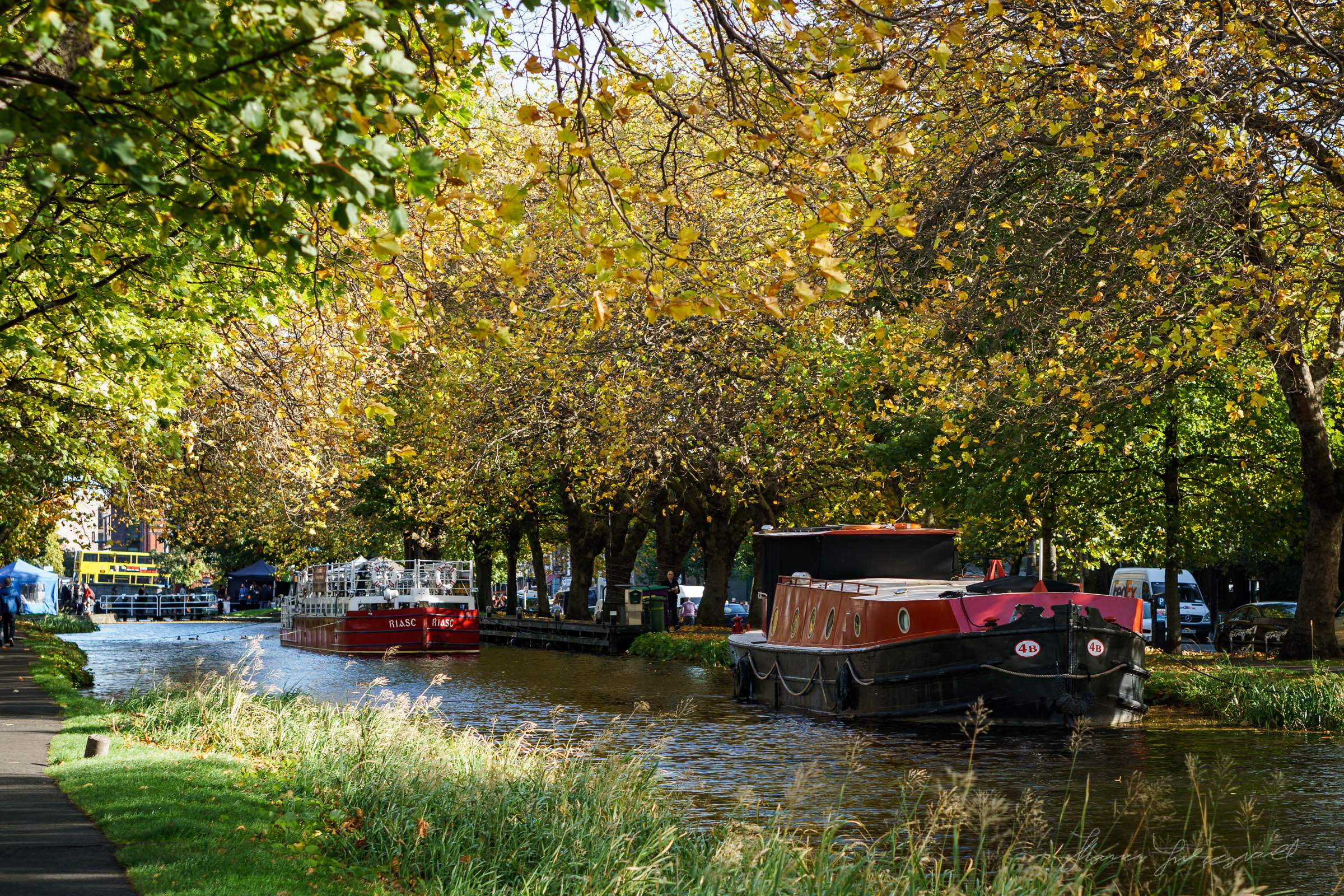 Autumn by the grand canal in Dublin