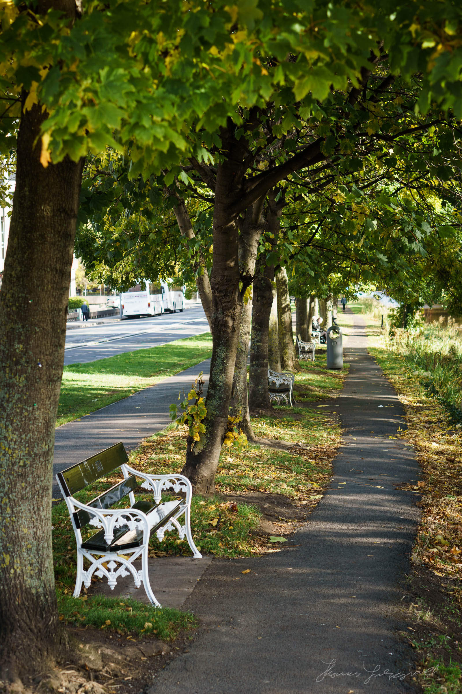 Autumn-Dublin-Sony-A6000-41.jpg