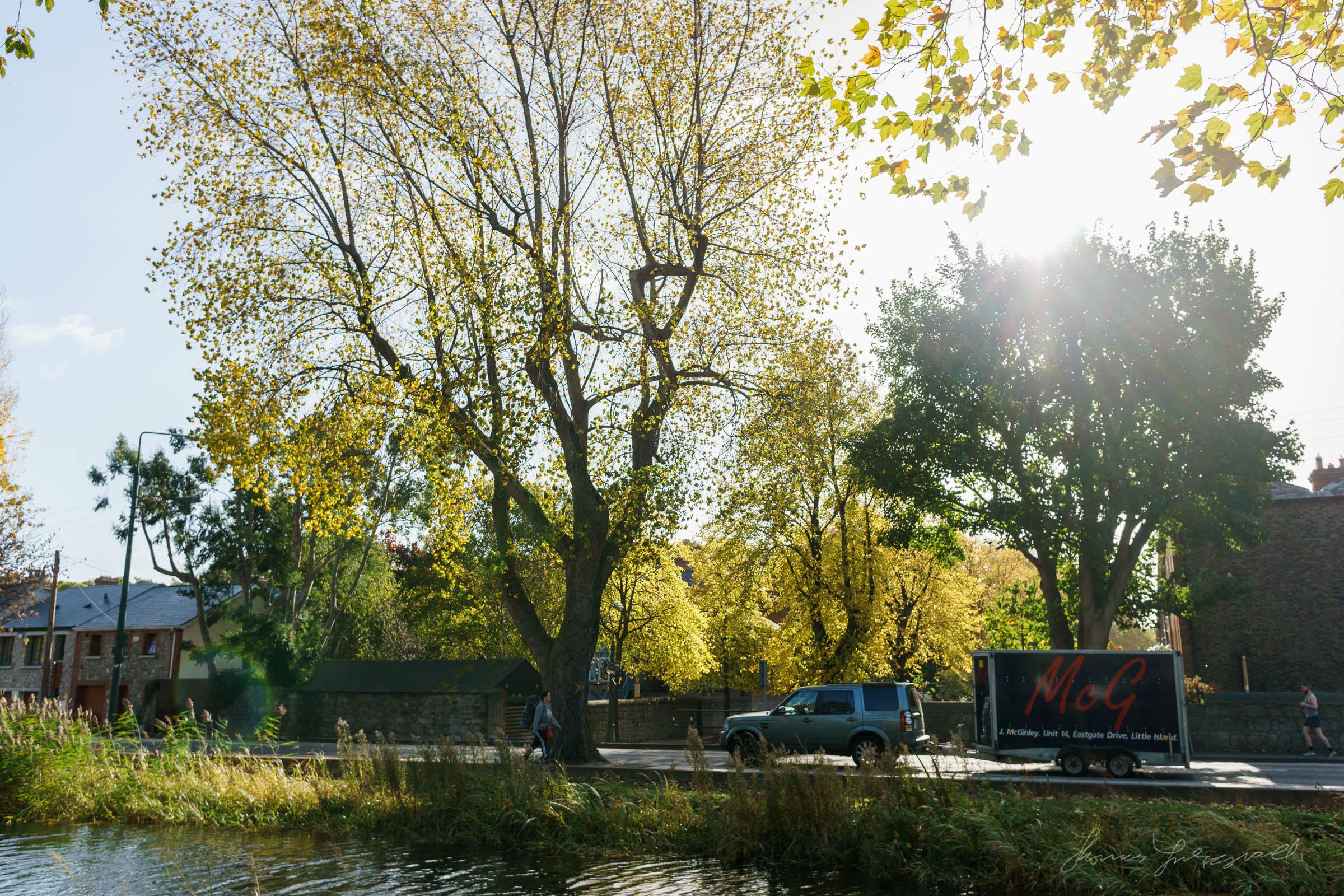 Autumn-Dublin-Sony-A6000-22.jpg