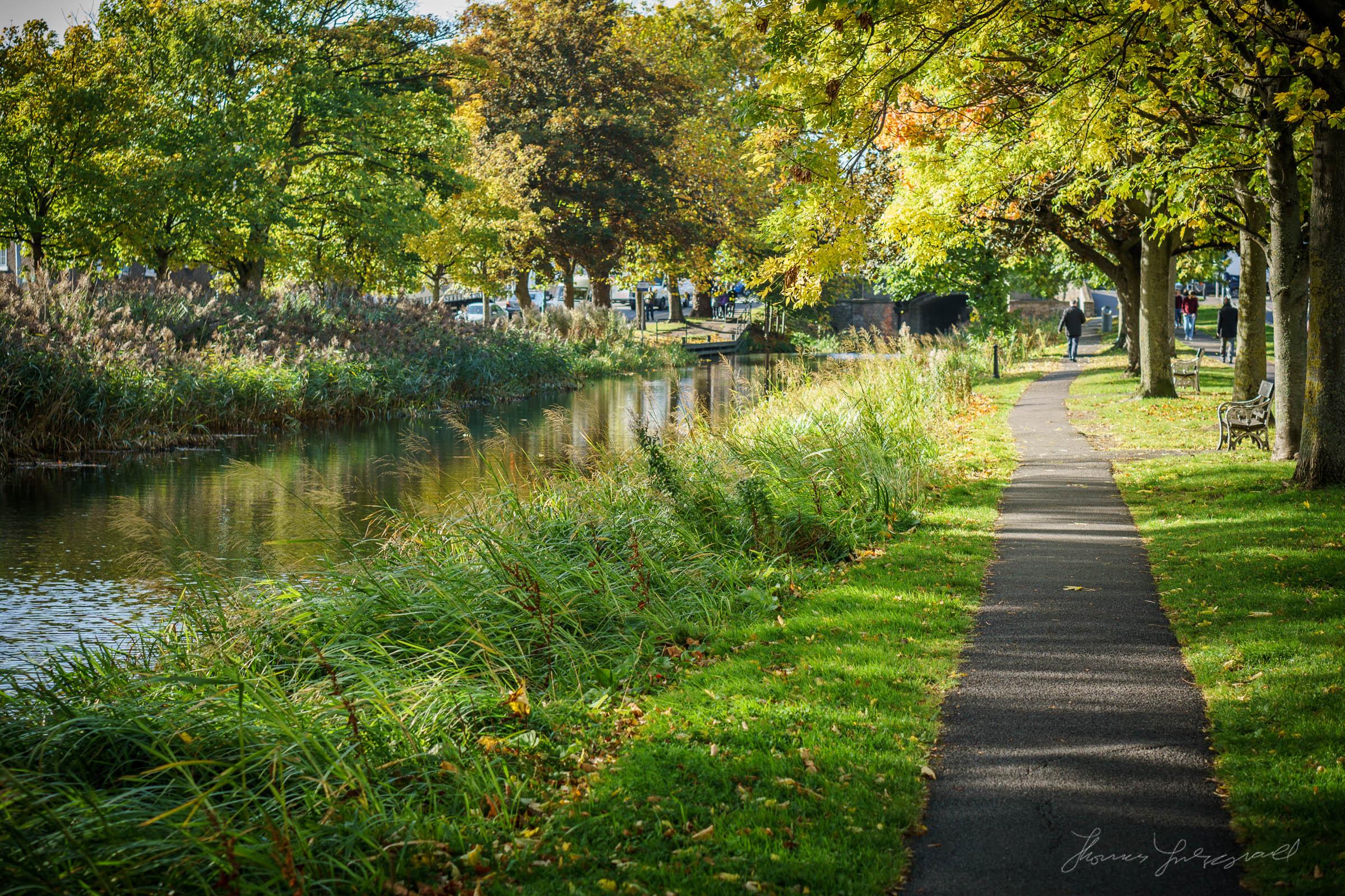 Autumn-Dublin-Sony-A6000-53.jpg