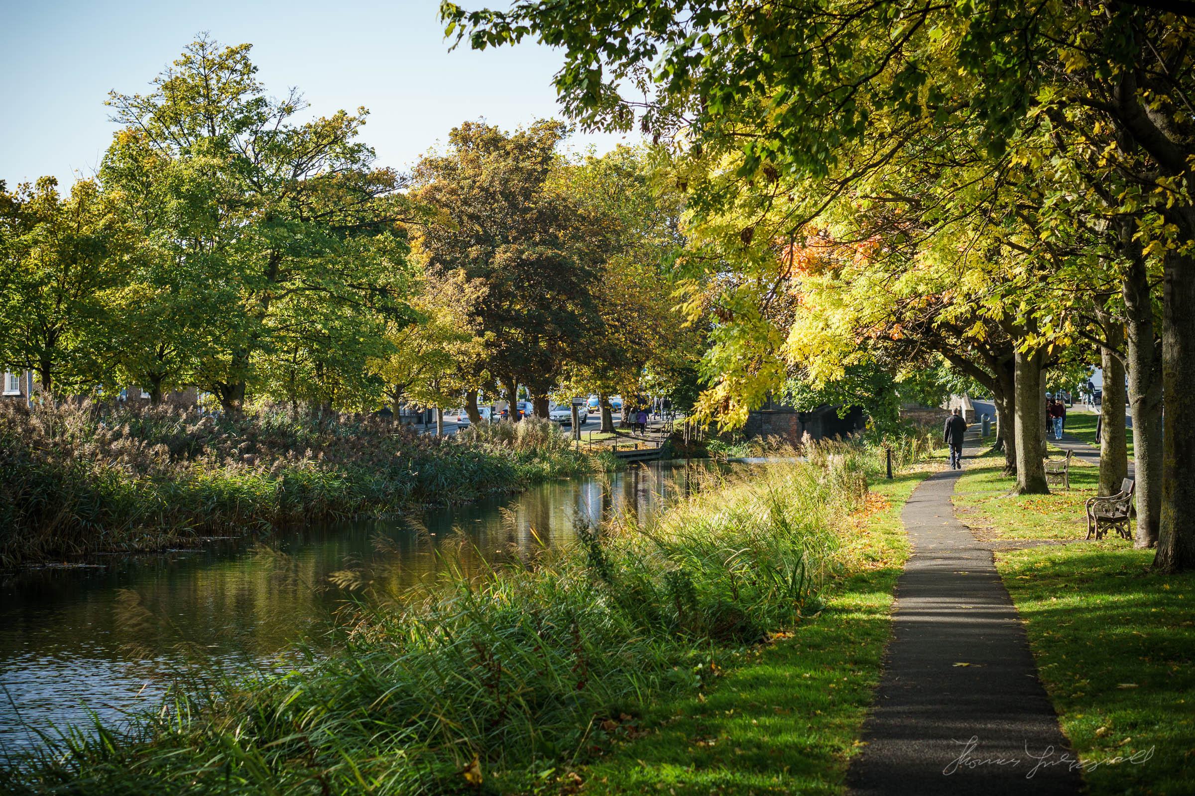 Autumn-Dublin-Sony-A6000-52.jpg