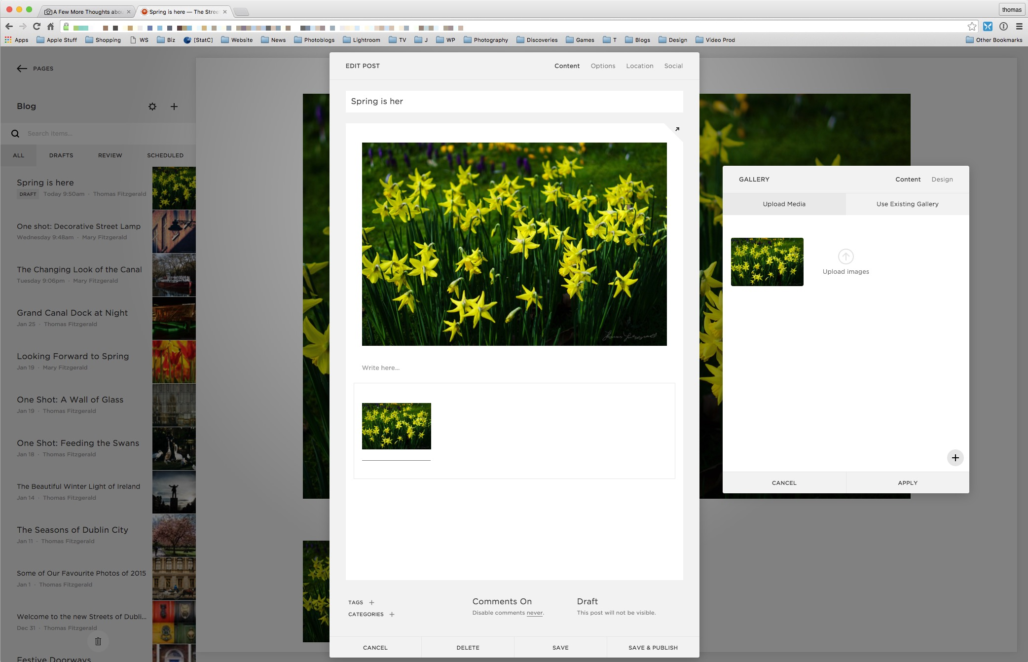 Setting Alt Text for Images in Squarespace