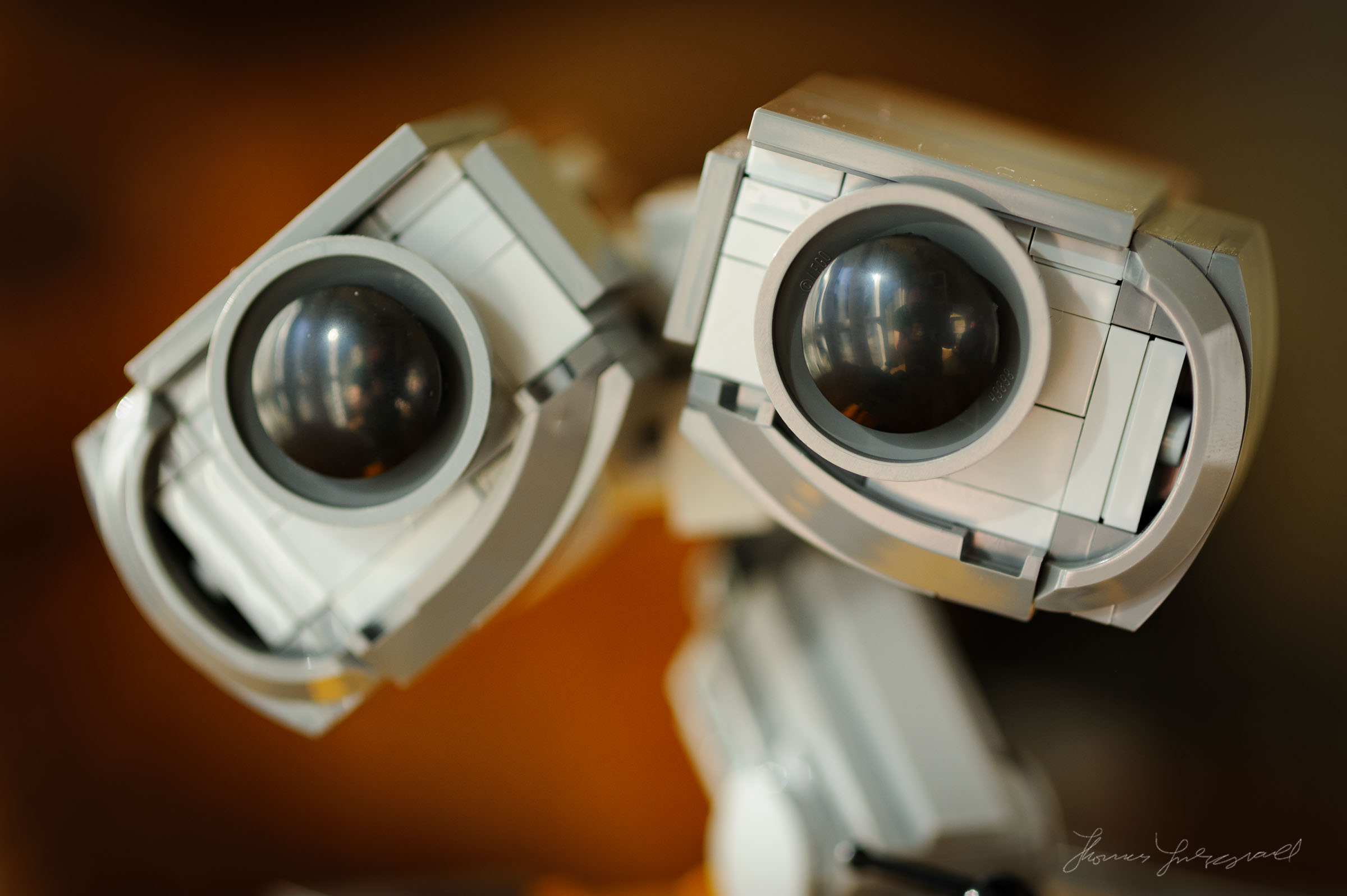 Lego Wall-E: Toy Photography by Thomas Fitzgerald Photography
