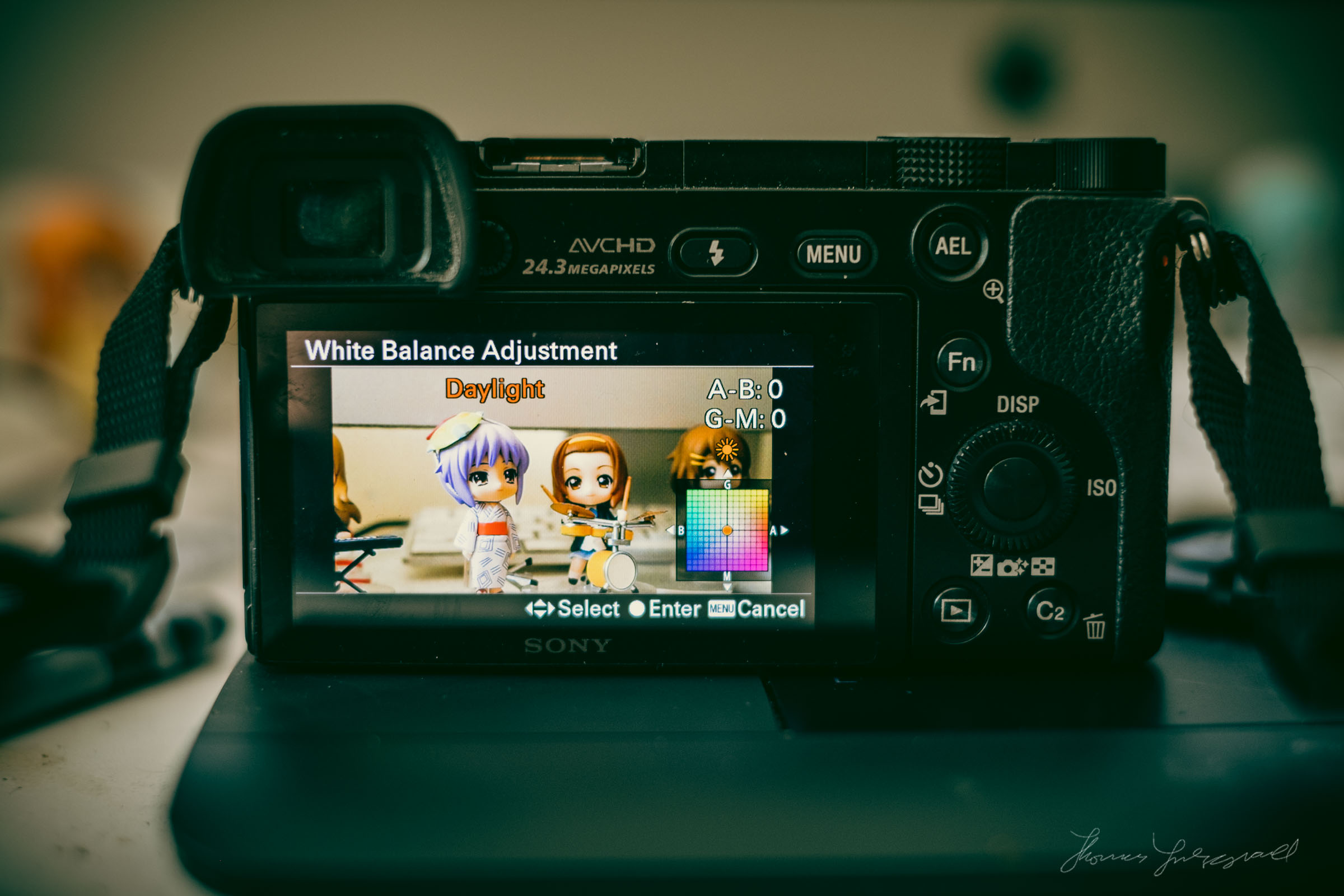 How to Adjust the Default White Balance on the Sony A6000 — Thomas