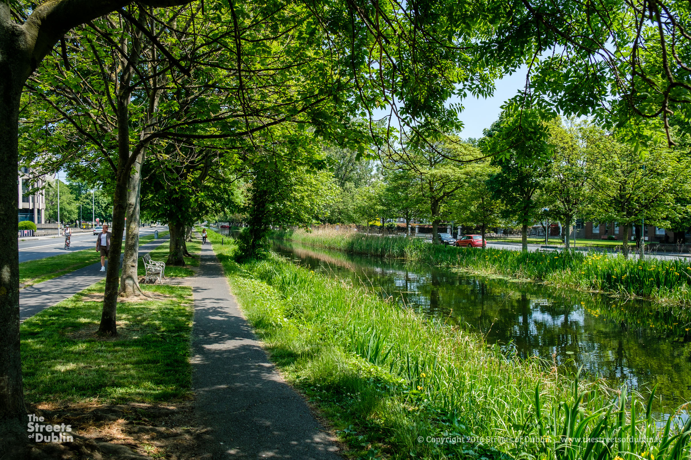 Path by the Canal
