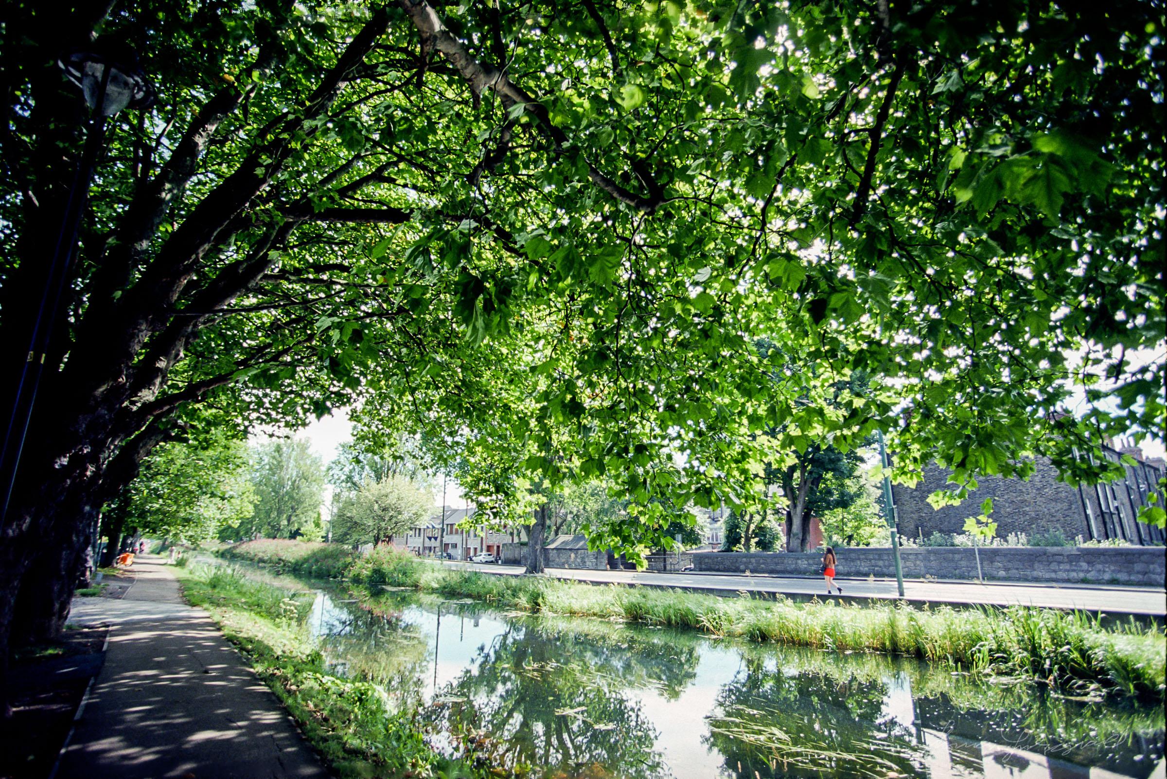 Canal in Dublin - Kodak Ektar