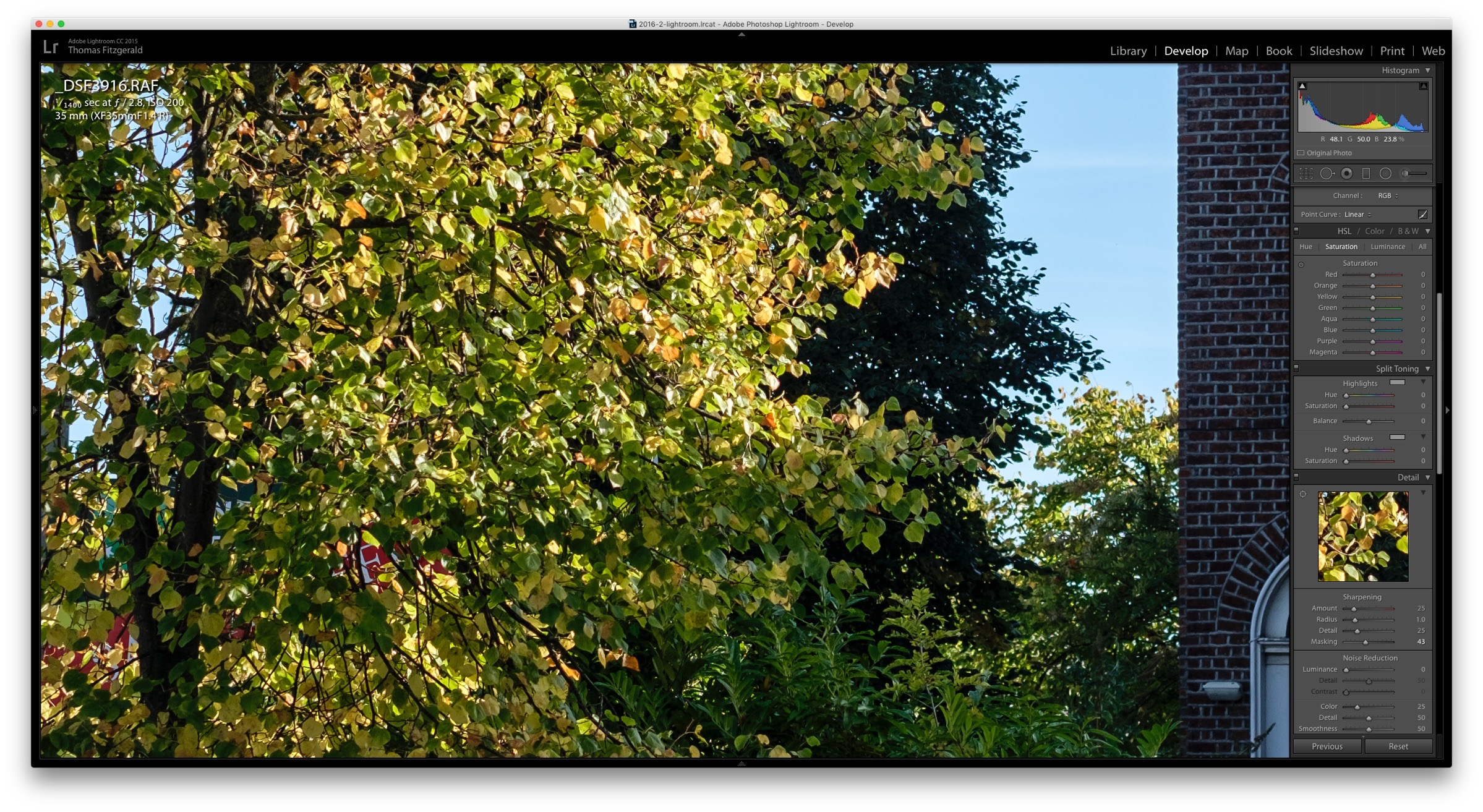 Lightroom-Screenshot-Foliage