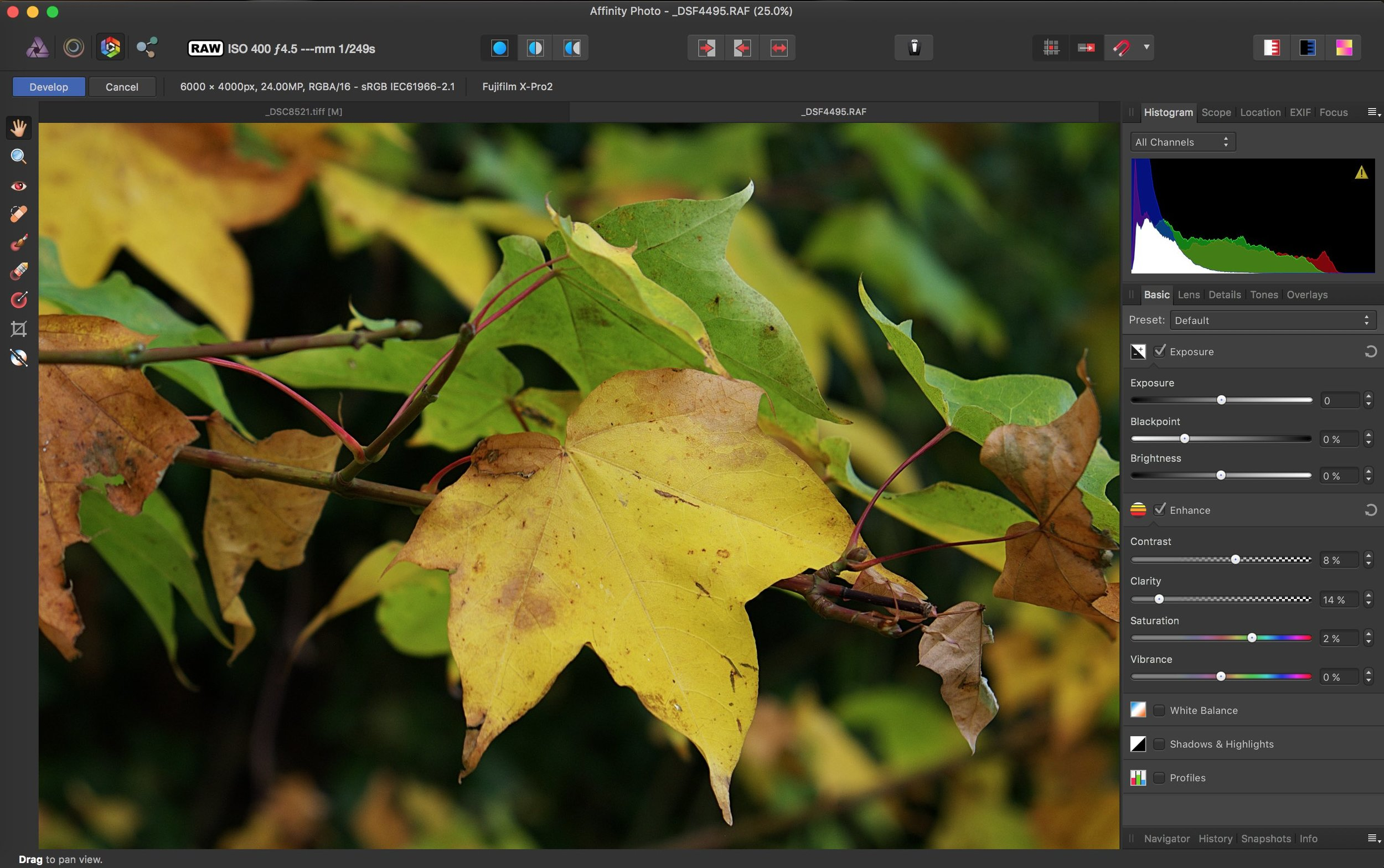 How to edit X-Pro 2 raw files in Affinity Photo