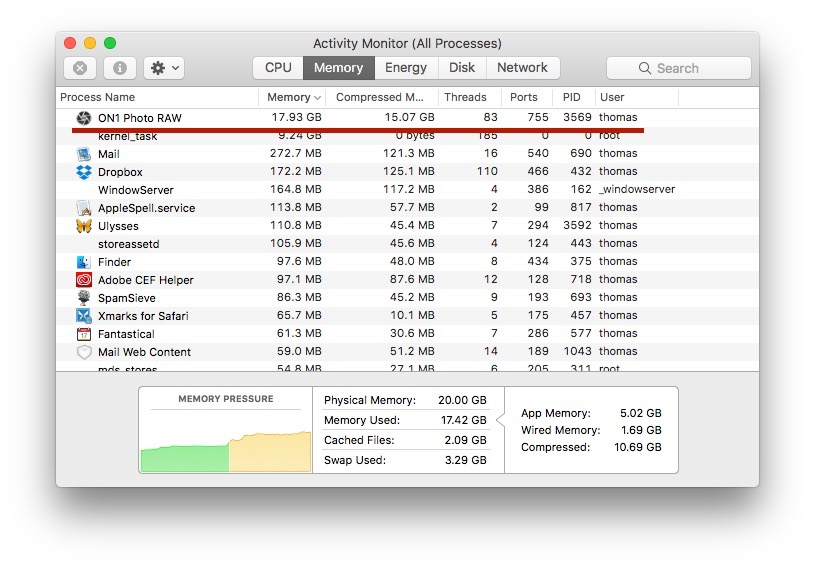 Memory usage after about 20 minutes of use