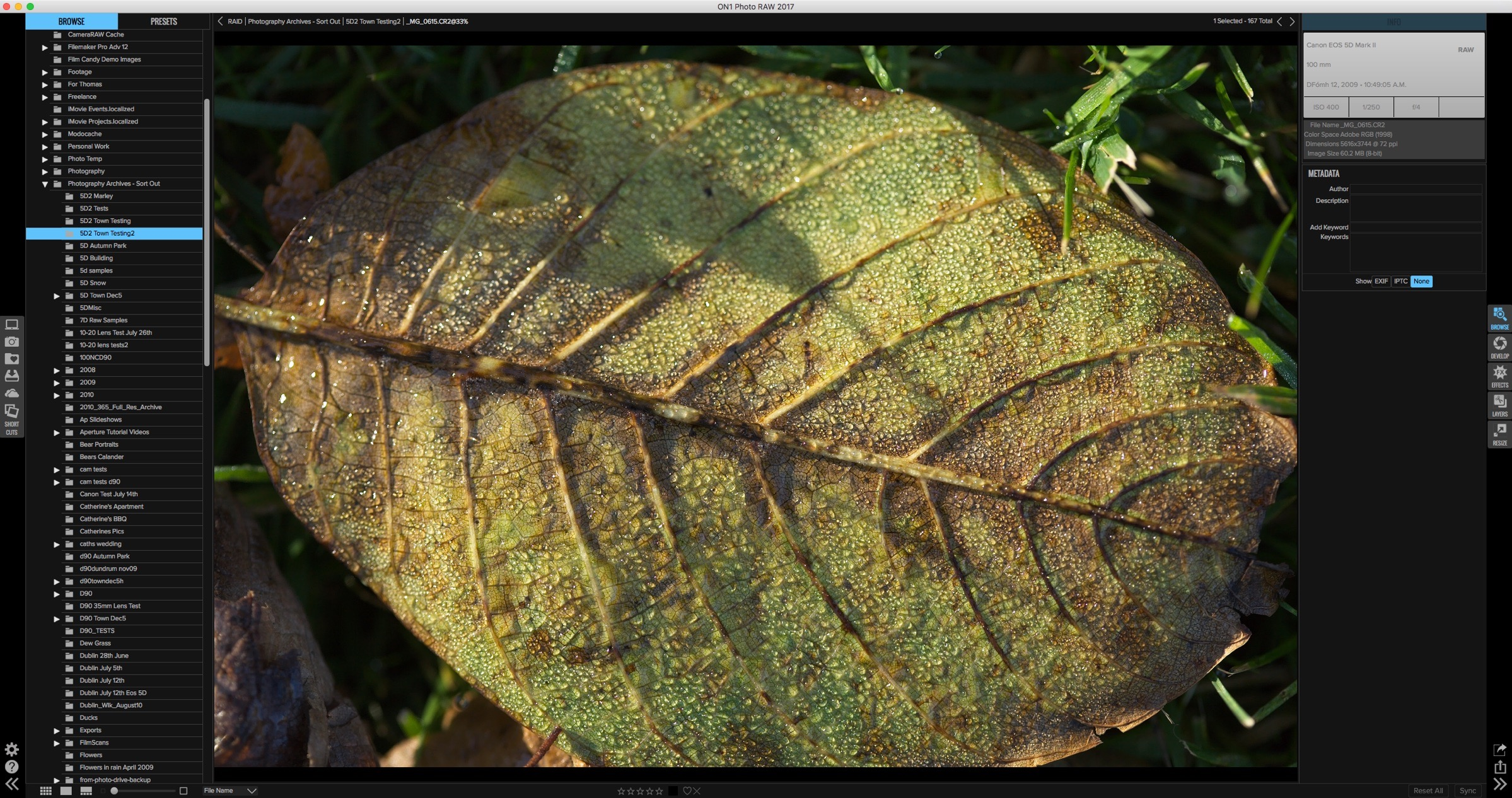 Raw Image from 5D Mark II