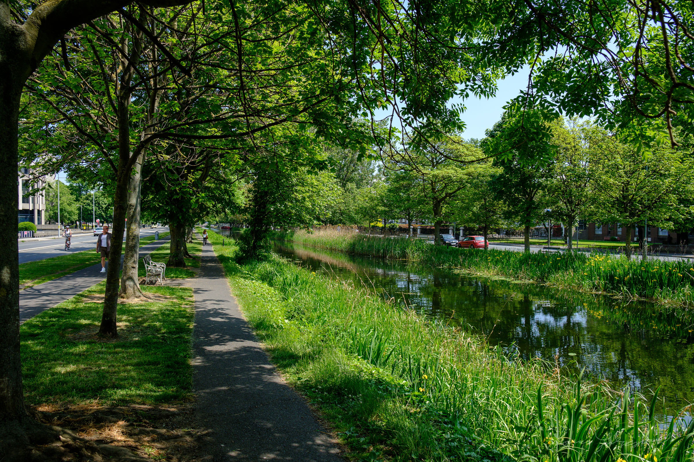 Path by the Canal Image from Fuji X-Pro 2 converted with Iridient X-Transformer