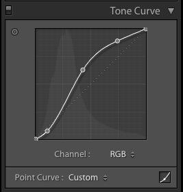 Complex-Curve