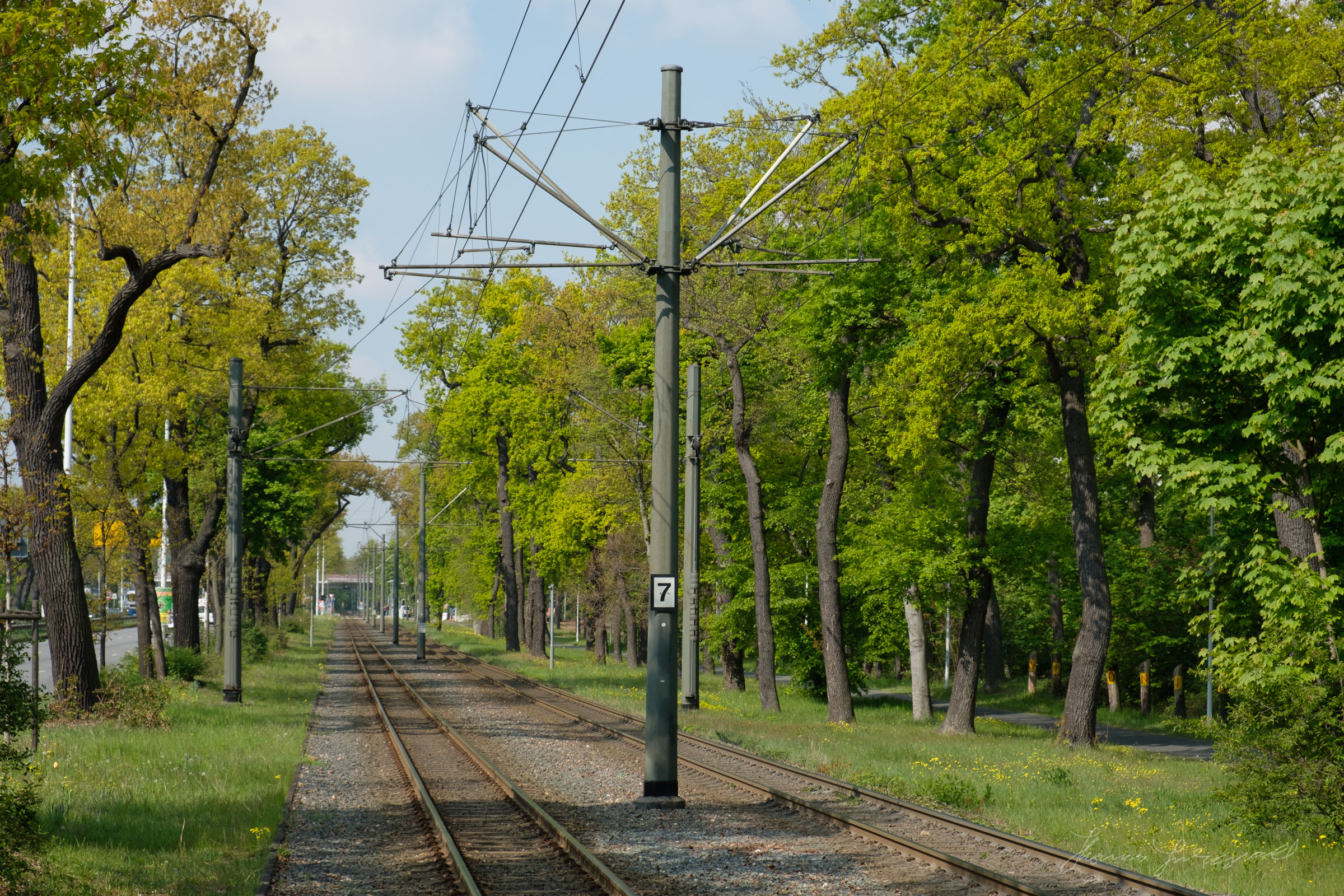 Leafy Suburbs of Darmstadt