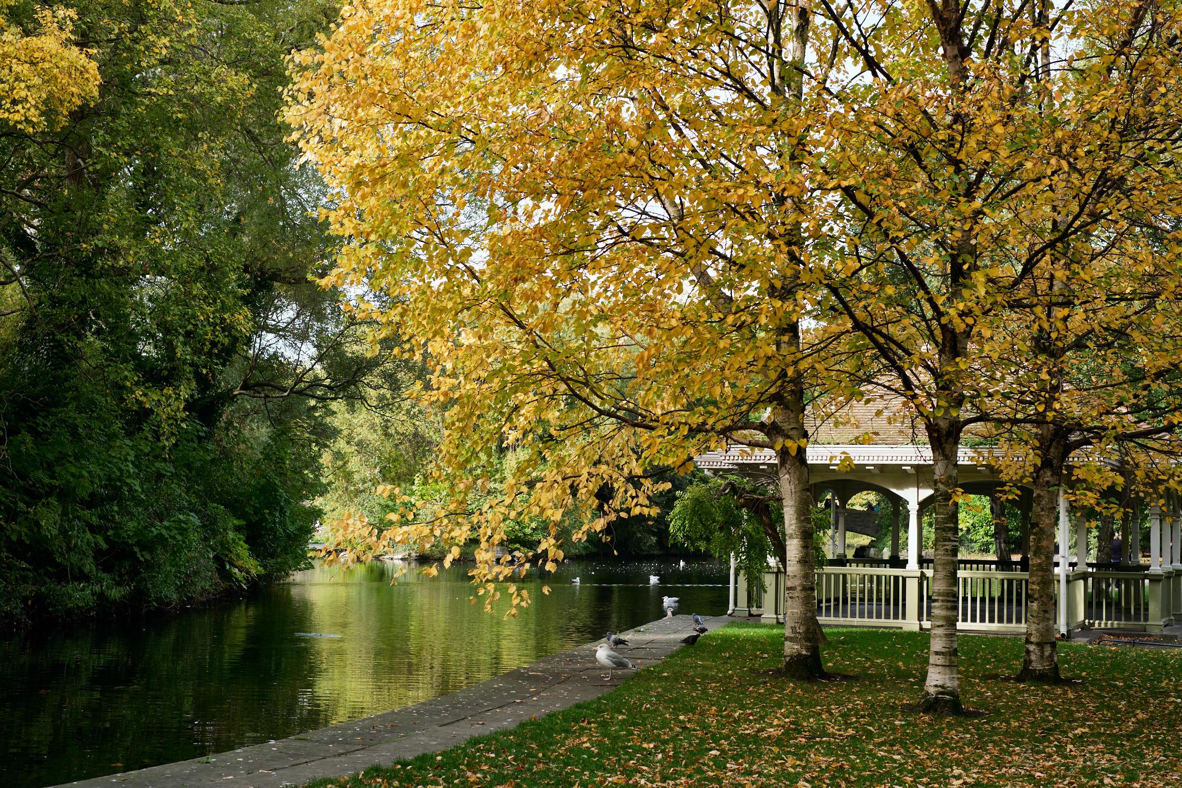 Street-and-park-autumn-393-Jpeg for Web.jpg