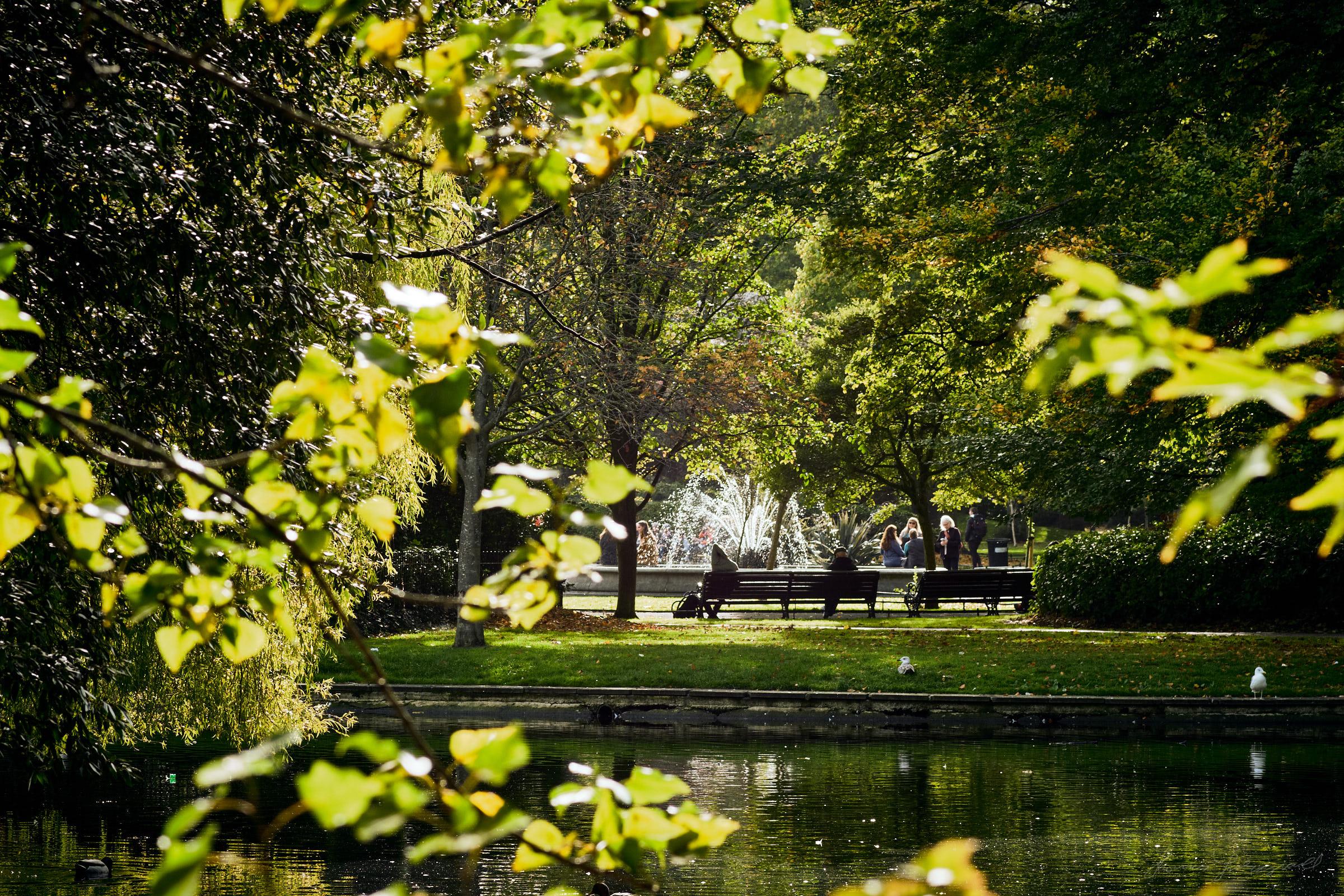 Street-and-park-autumn-426-Jpeg for Web.jpg