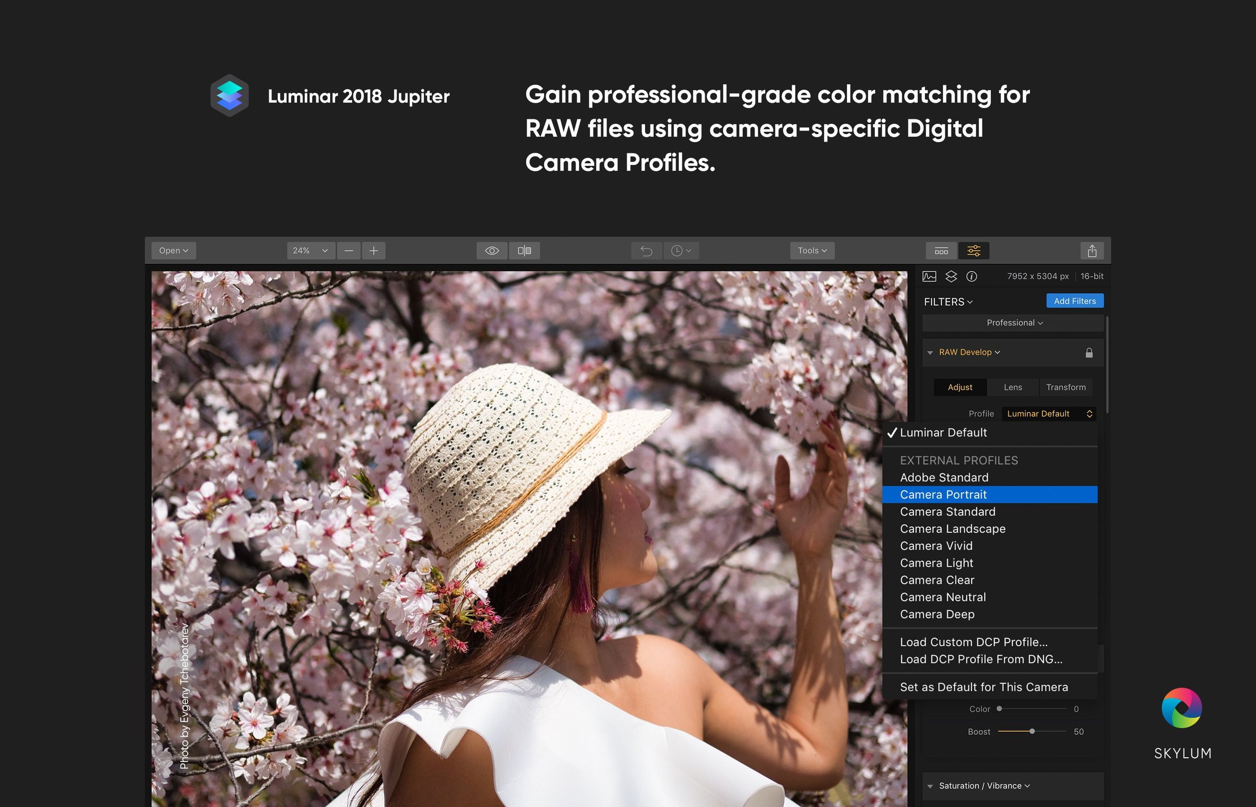 04_Digital Camera Profiles.jpg