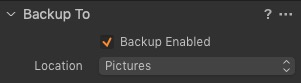 """""""Backup To"""" Capture One import Panel"""