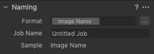 """Capture one """"Naming"""" pane in the import window"""