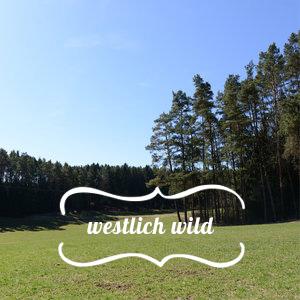 westen-deutschland.jpg