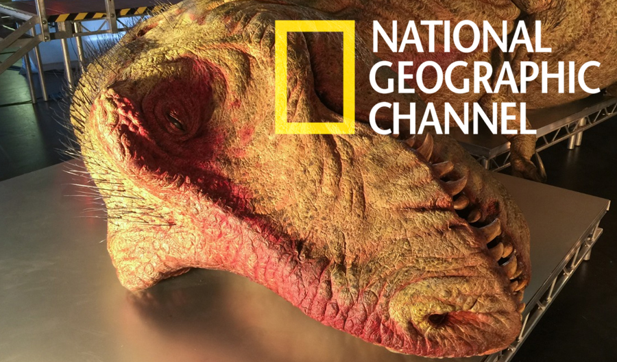 T. REX AUTOPSY [NAT GEO] (2015)   Flex Animation provided a fully anatomically accurate T. Rex rig, complete with muscles, skin sliding, flexing and jiggle.   Read more...