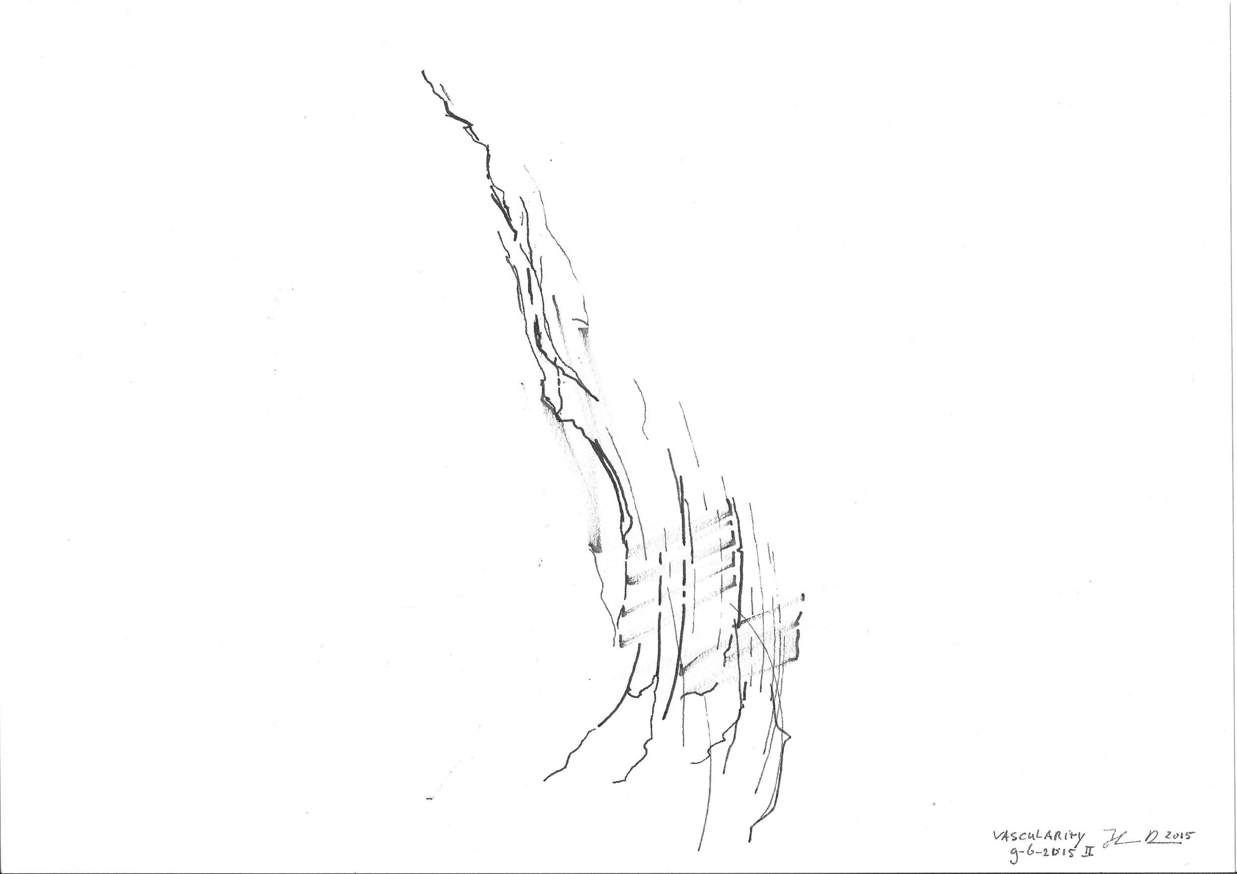 pss elements vascularity 3.jpeg