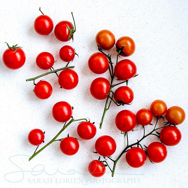 Cherry Tomatoes. In the mood for a colourful post and found inspiration after a trip to the farmers markets today. Chives, Cherry Tomatoes and Mint - three of the flavourful, fresh deliciousnesses in my farmers market basket. . . . . . #foodphotography #farmersmarket #farmtotable #sydneymarkets #sydneyfoodie #foodblogger #foodbloggersydney #freshfood #veganphotography #commercialphotographer #foodportrait #sydneylocal #sydneyfoodblogger #cherrytomatoes #freshherbs #cleancuisine #chefsydney #sydneyeatstreet #northernbeaches