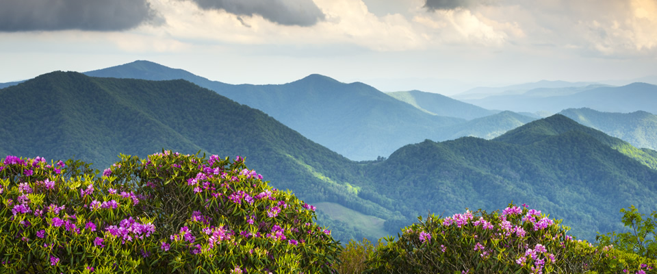 rhodo-mountains.jpg
