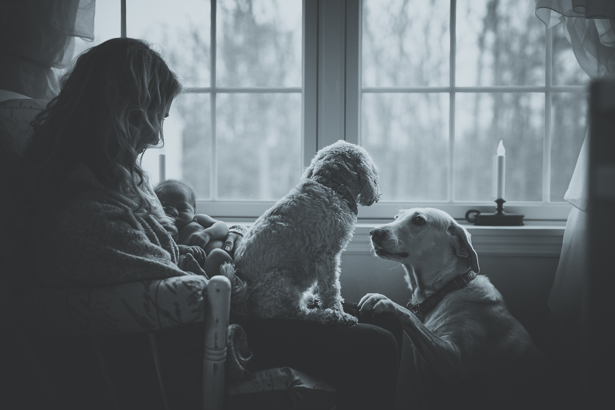 Poconos-Abington-real-life-Childrens-kids-family-photographer-photgraphy-3.jpg