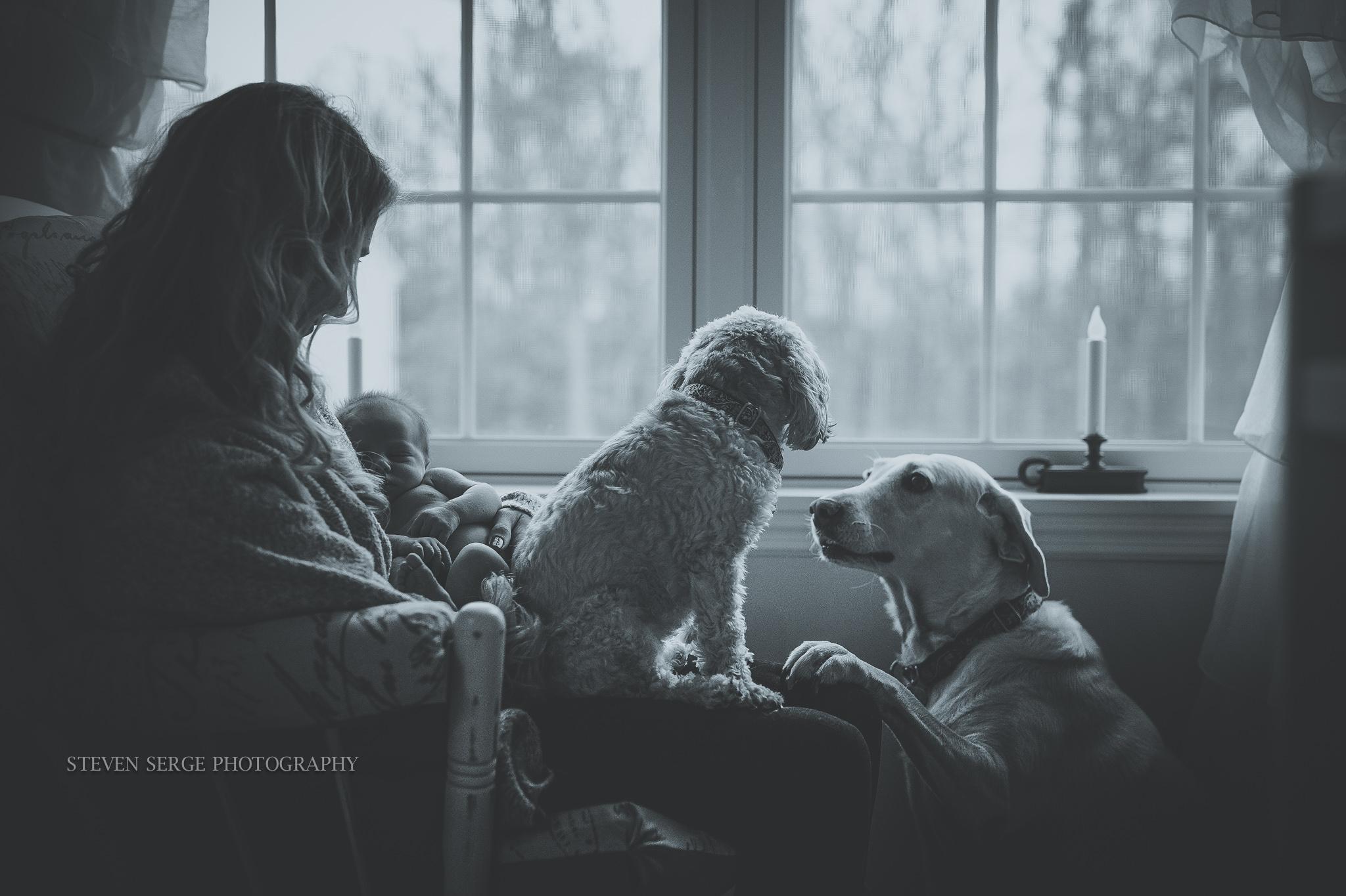 Scranton-Clarks-Summit-Newborn-family-photographer-photography-7.jpg