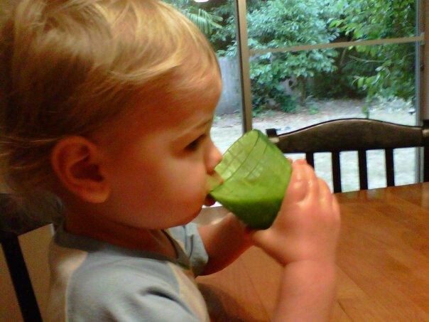 toddler drinking spirulina smoothie