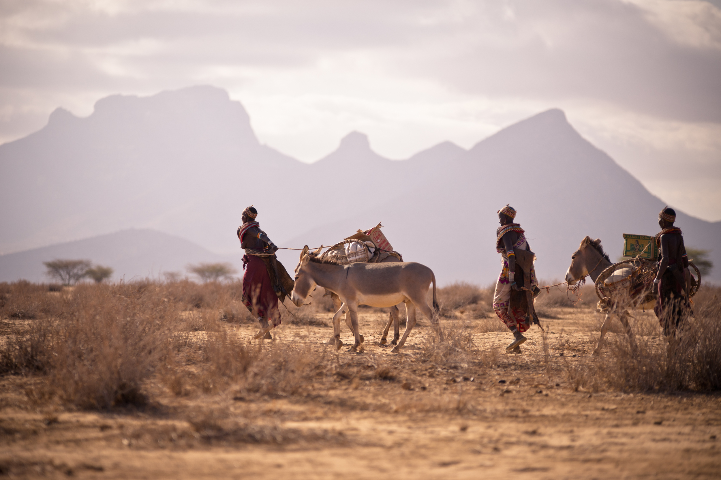 Hauling Supplies Across Kaisut Desert credit David duChemin for BOMA.jpg