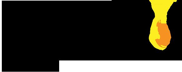 Nuru-International logo.png