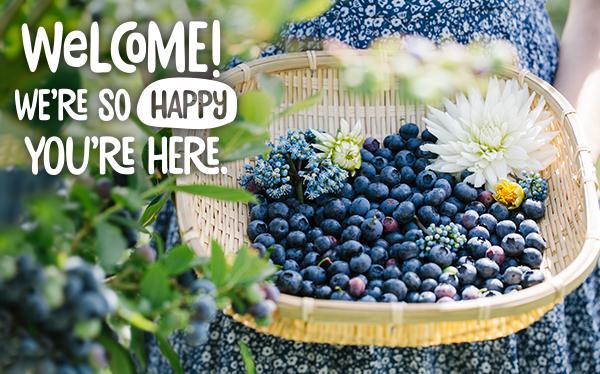 bluberries-np.png