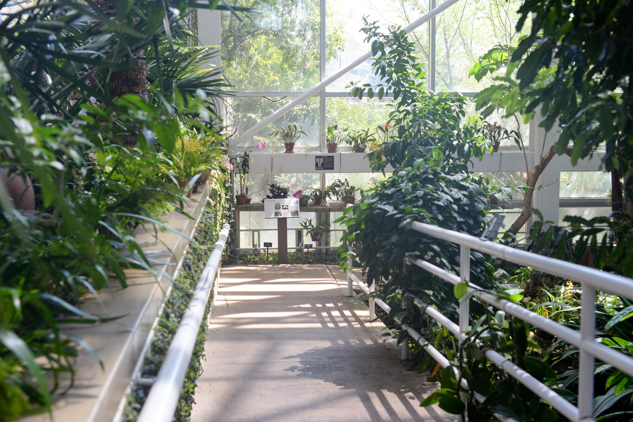 150404_hkp_botanicalgardens001.jpg