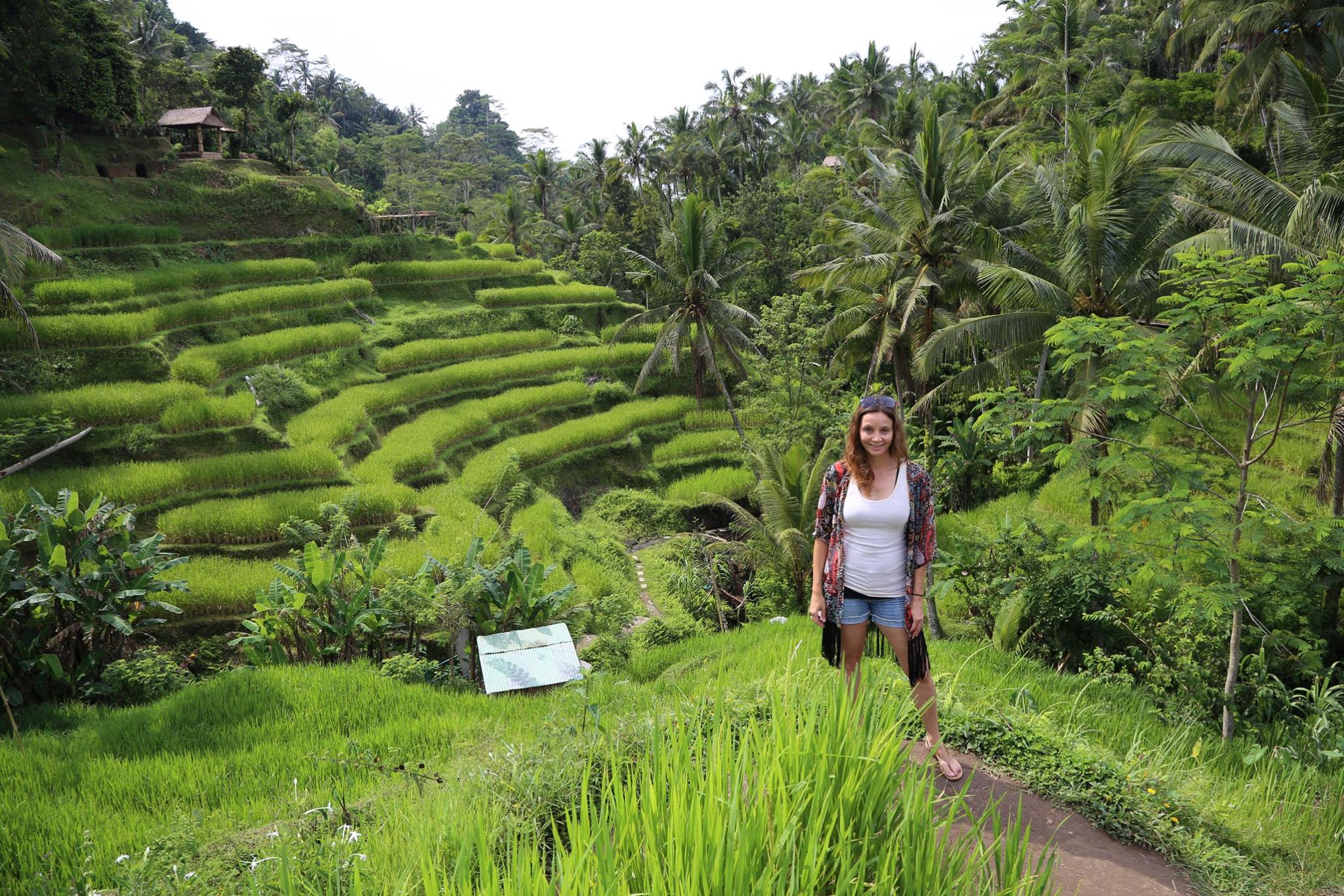 Walk the Rice Terraces in Indonesia