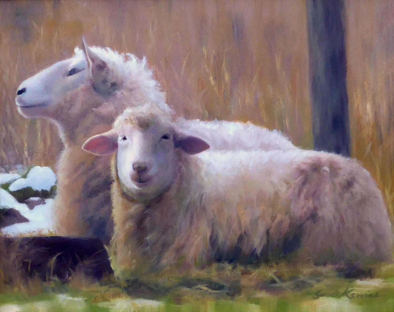 S_Kamins_Sheep.JPG