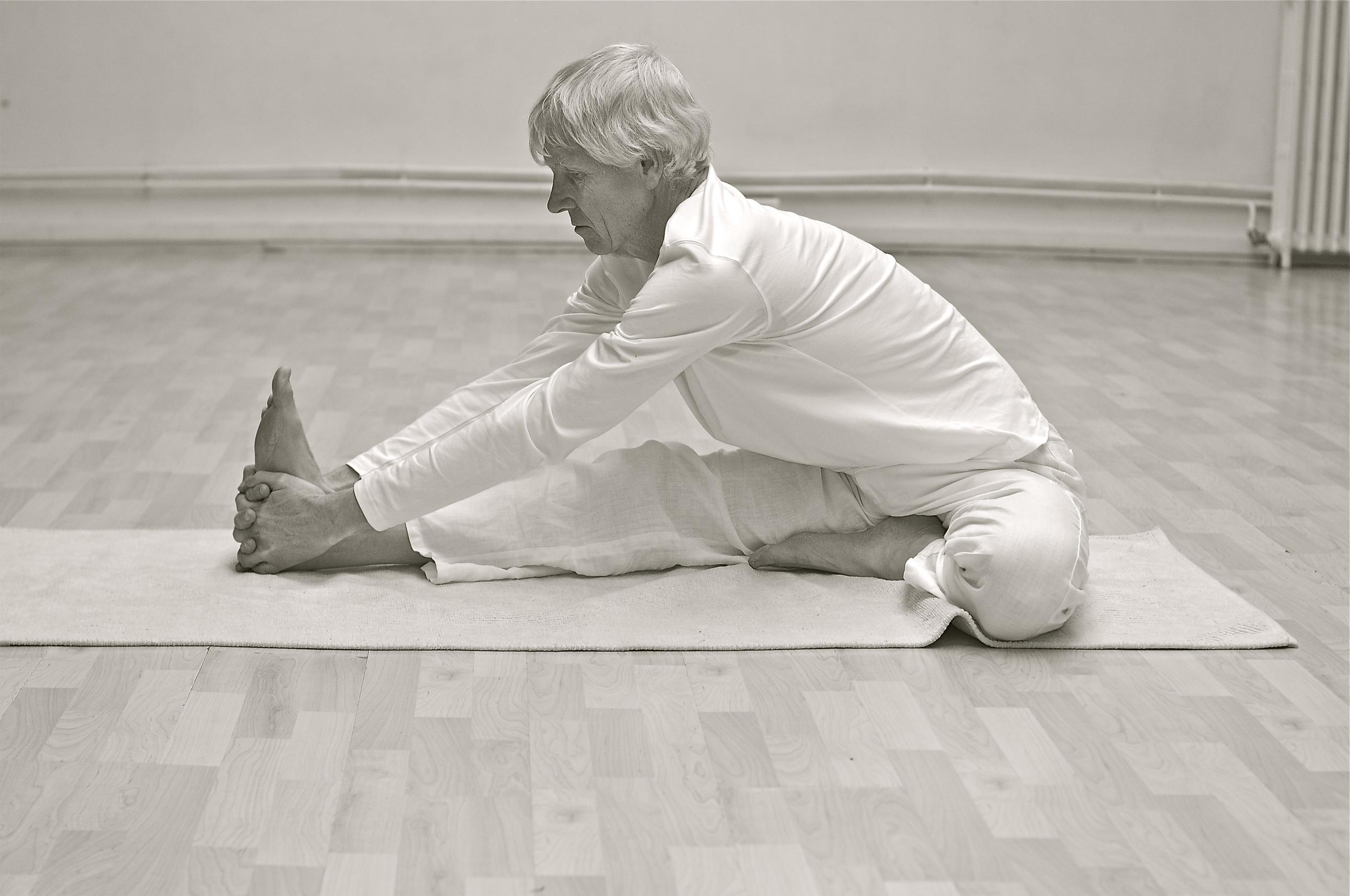 janu-sishasana-koos-zondervan-posture-yoga.jpg