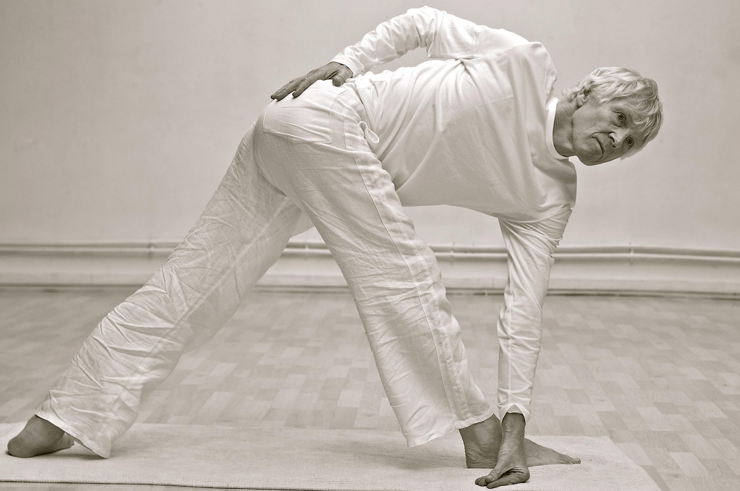 koos-zondervan-yoga-cachemire.jpg