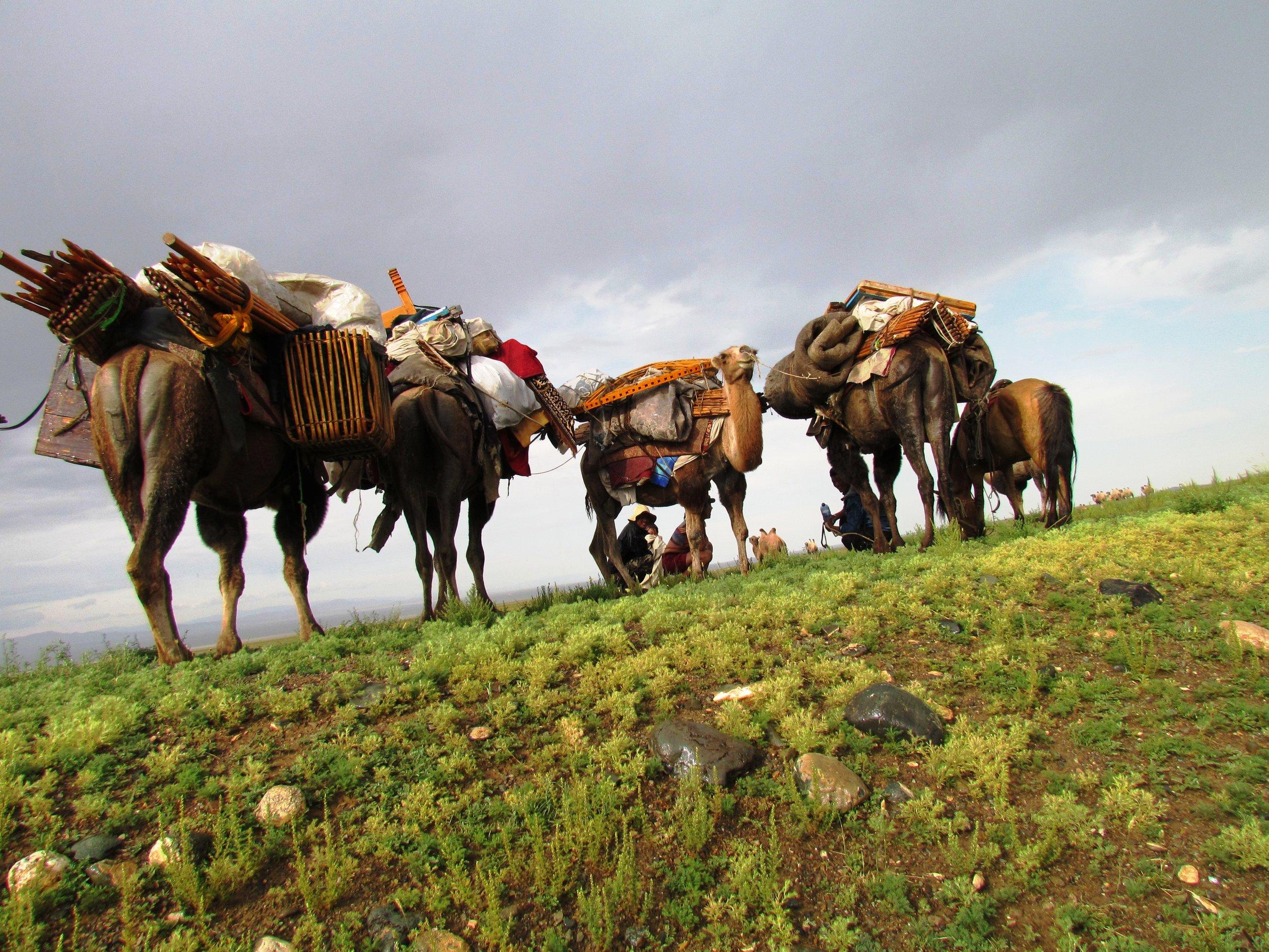 sejour-mongolie-pas-cher.jpg