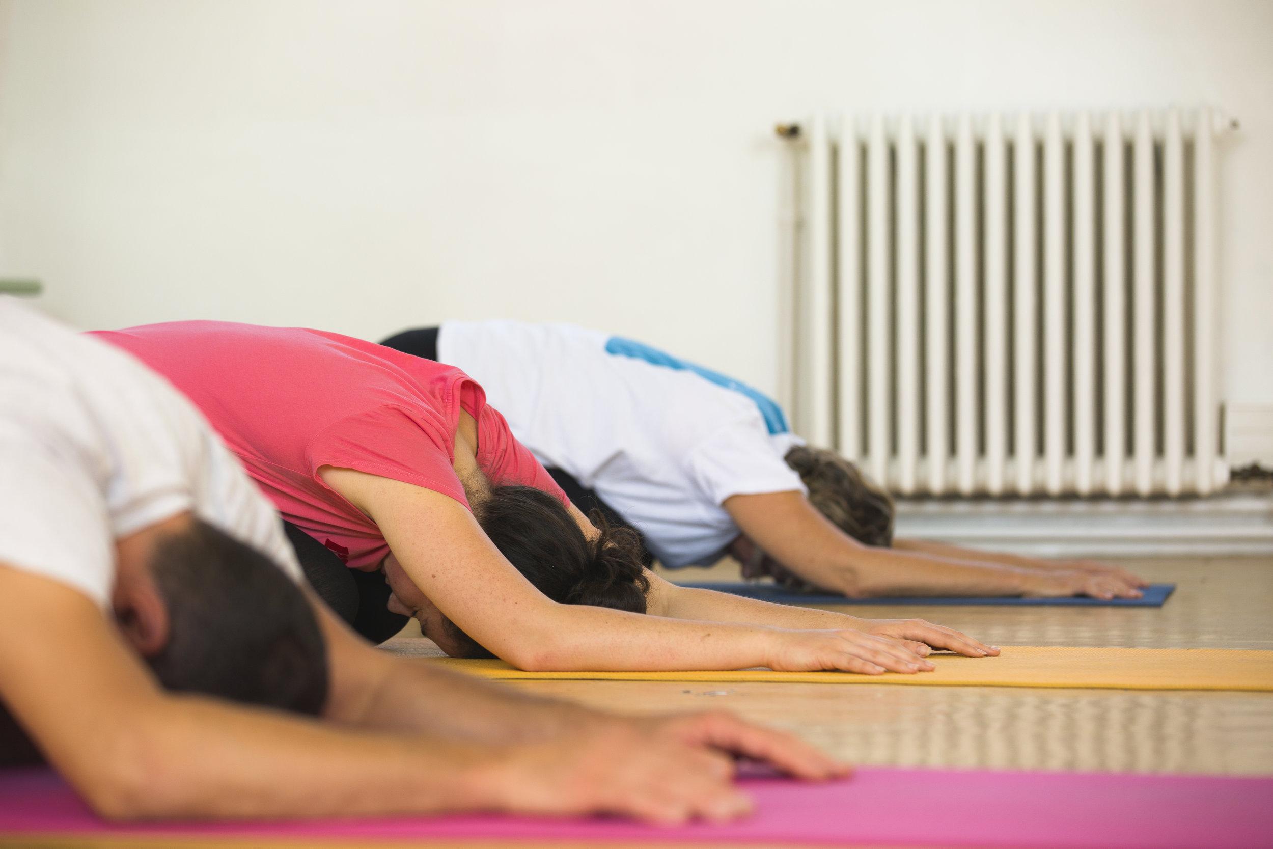 Cours Et Formation De Yoga A Fontenay Sous Bois Paris Yoga Paris