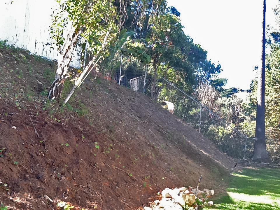 Before | Hillside
