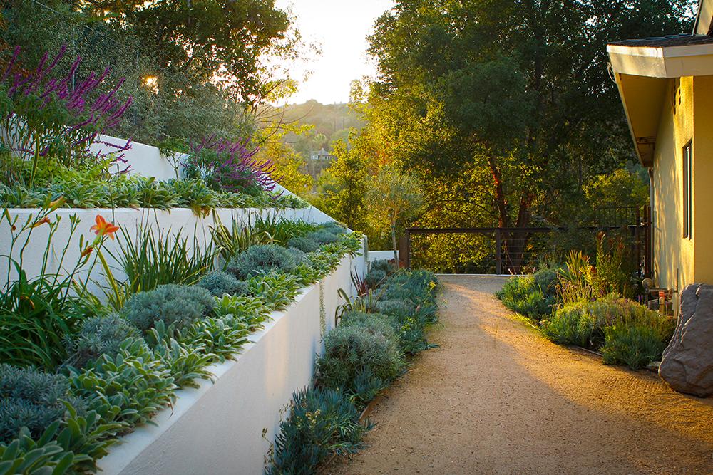 After | Hillside Terraced Gardens